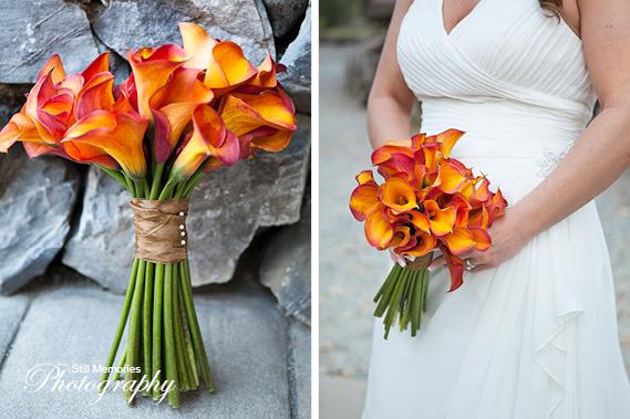 ironstone-vineyards-murphys-ca-wedding-photography-20