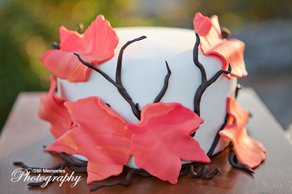 ironstone-vineyards-murphys-ca-wedding-photography-29