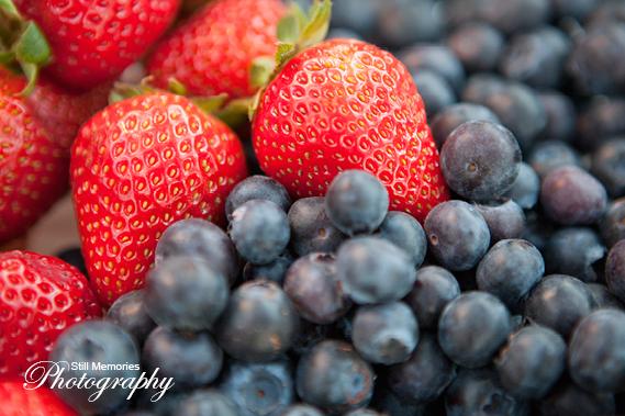 ironstone-vineyards-murphys-ca-wedding-photography-38